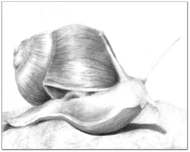 pyreaus inspired manifestation friendly slug of eternal devotion