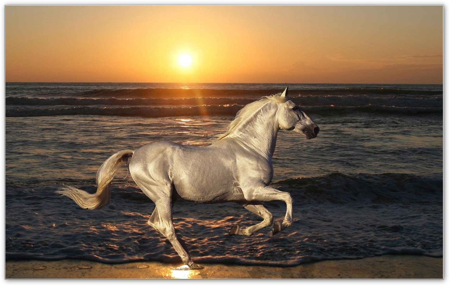 Pyreaus Inspired Manifestation Horse Symbolism Power Might And
