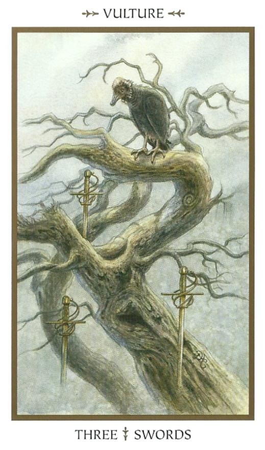 Animal Tarot Cards: Minor Arcana