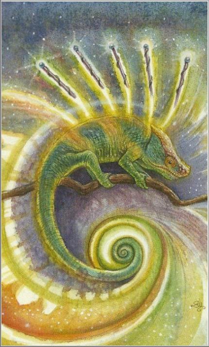 Animals Divine Tarot: Minor Arcana